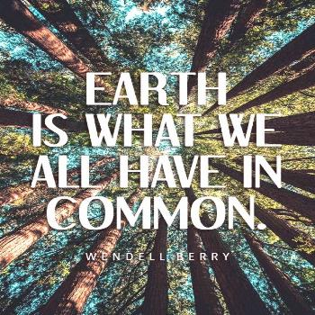 40 Best Environmental Quotes To Inspire You To Do Your Part To Save The Earth