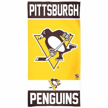 WinCraft Pittsburgh Penguins 30
