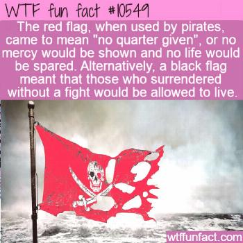 WTF Facts : funny, interesting & weird facts  WTF Fun Fact - Pirate Flag Colors  10549 flag facts m