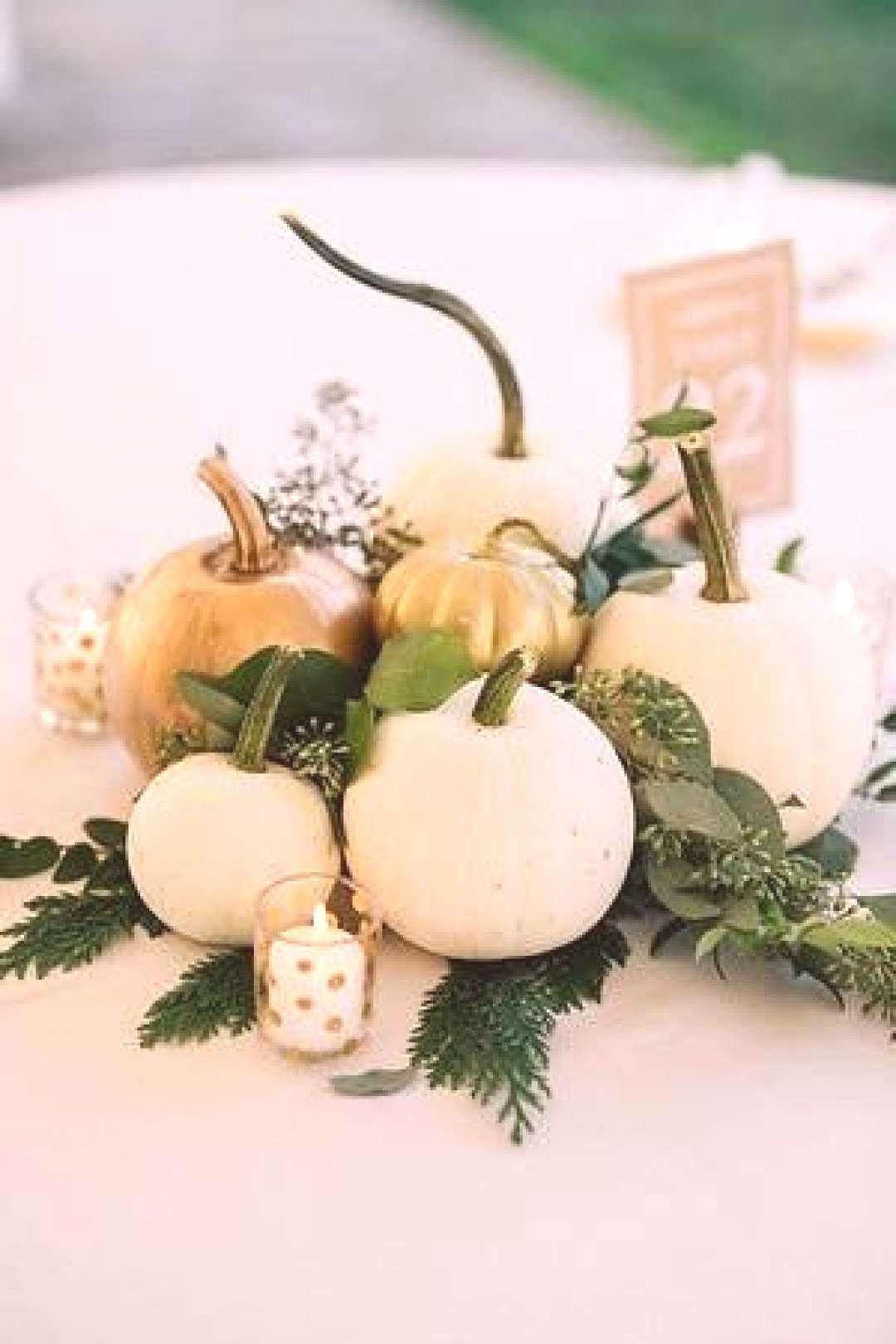 attn Pittsburgh Fall brides/grooms! I will grow your wedding pumpkins! - I have a small farm opera