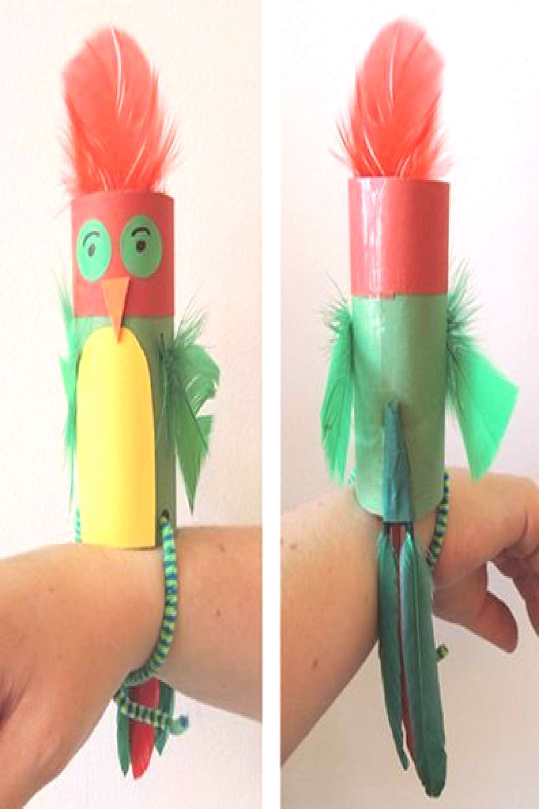 Crafts for kids - parrot that sits on your arm wrist. Make this from toilet paper tube. Great as a