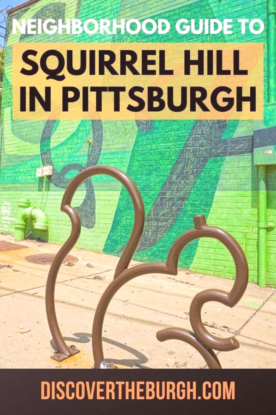 Squirrel Hill Neighborhood Guide Find a new favorite restaurant, bar, or attraction in Squirrel Hil